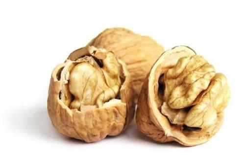 ядро орех сорта идеал